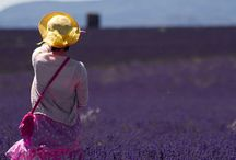 Provence et côte d'azur / Le meraviglie della Francia del Sud