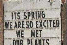 garden.humor