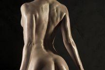 anatomy/pose
