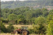 Landschap van de Haute-Marne / Agrarische streken in Noord-oost Frankrijk