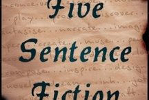 Five Sentence Fiction