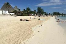 Jamaica Ya Man / Montego Bay Freeport