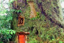 Tree Houses & Hobbit Homes / by Jae Briggs