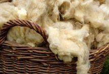 Wool / Ideas, inspiration and projects related to wool fiber