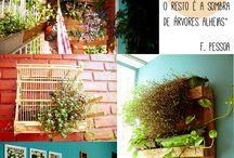 Hanging plants inside
