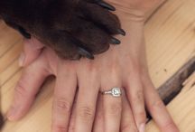 Engagements! / Engagement Photos we've taken