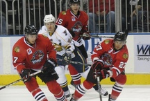 Rockford IceHogs / by Kat