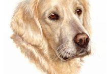 Saar de hond
