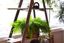 interior for modern house / interior