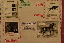 Anchor Charts / by Martha Parker