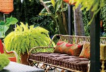 Backyard Paradise / by Mindy Hollingshead