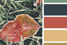 Color Combinations / by Julie Knobbe