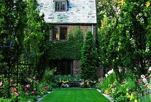 Steve Likes This Landscaping / These are Landscaping ideas that Steve likes