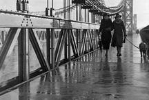 Toulouse noir et blanc