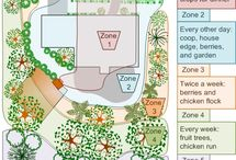 Permaculture / by Emily Pell