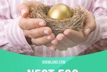 Building a Nest Egg