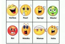 Classroom Maori