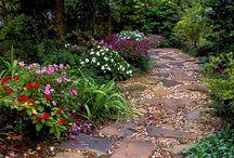Garden pathways and borders
