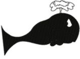 Silhouette Whale