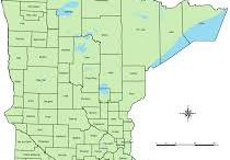 Minnesota go go Minnesota  / Go go Minnesota