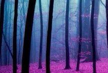 Naturaleza / Imagenes bonitas de naturaleza