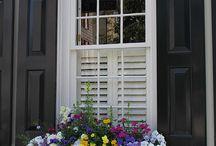 Balkon és virágok
