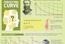 Memory Retention Curve