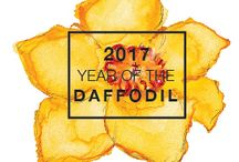 2017 Year of the Daffodil / Daffodils are a brightly colored, spring-blooming, self-propagating perennial that originated in Europe. Plant in fall for spring color! #YearoftheDaffodil 2017 National Garden Bureau Year of the Daffodil