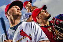 Cardinal Baseball / by Kacie Downs