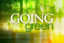 It's a Green Thing / by Meredith Wingerson