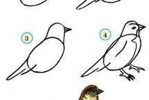 Vögel zeichnen