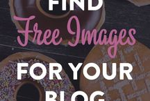 Blogging Along