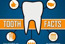 UDental Dental Facts