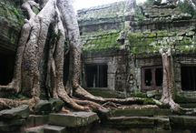 Trips: Cambodia,Vietnam & Thailand 2015 / Things to Do in SEA.