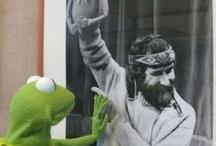 Got to love a muppet