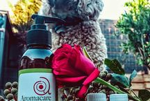 Behind the scenes / At Aromacare we like to have a little fun. We love Animals, Nature, Yoga, Travel and always find a way to combine our love for Aromatherapy in these activities.