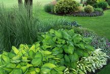 Landscaping Ideas / by Sarajane Olson Weiss