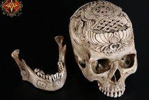 Skull dragged
