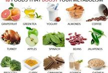 Ingredients of Health