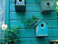 bird house / by Leslie Powers