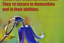 "Feeling Secure / ""Man maintains his balance, poise, and sense of security only as he is moving forward."" ~Maxwell Maltz"