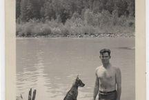Dog Days Past