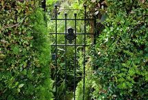 Beautiful Garden..