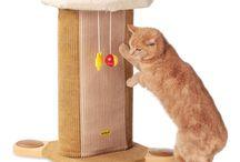 Cat Scratchers / Cleo cat scratching posts