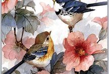 dans l'hibiscus