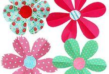 6 cípy kvet