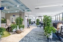 PRO 7 / SUSTAINABLE, GREEN, WELL OFFICE