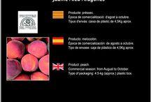 Laura Mosegui Llop i Jaume Aleu Aragonés / Cooperativa de Fruita de La Bisbal de Falset