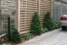Parking Stations / Landscaping ideas for your driveway.