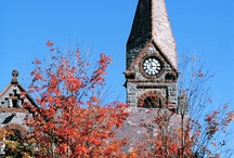 University of Massasshuetts, Amherst